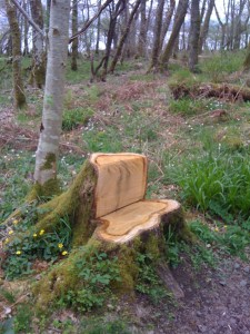 tree trunk or seat