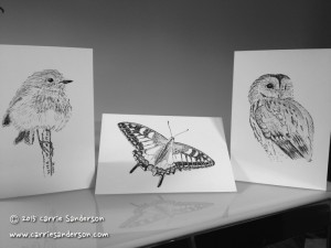Greeting cards - robin, butterfly, owl