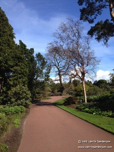 Mini-Adventure in Edinburgh's Botanical Gardens