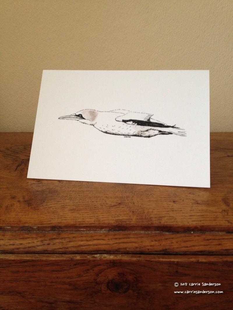 Jet Fighter Gannet Greeting Card