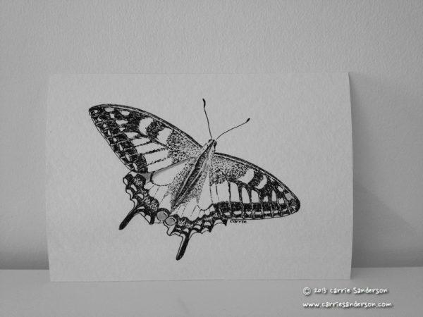 Swallowtail Butterfly Giclée Print