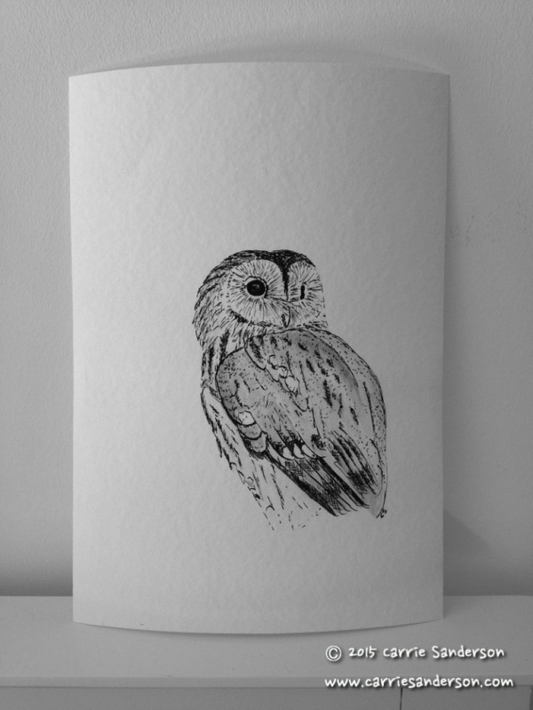 Tawny Owl Giclée Print