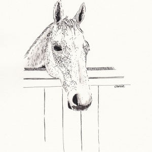 Stable Horse - Carrie Sanderson Original