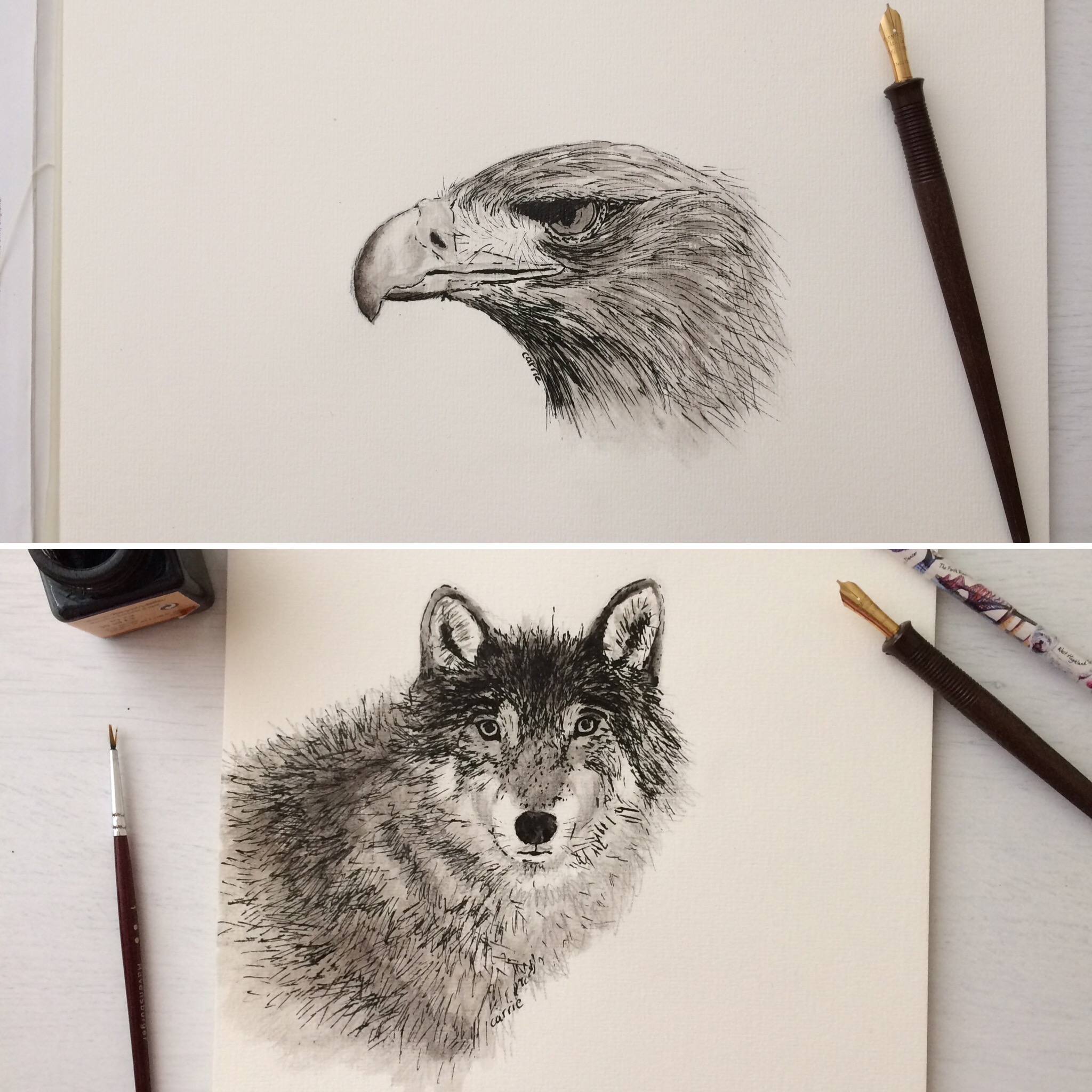 Eagle-Eye And Wise Wolfy