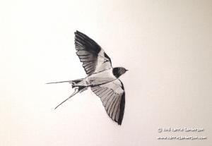 As Swift As A Swallow - Carrie Sanderson Original