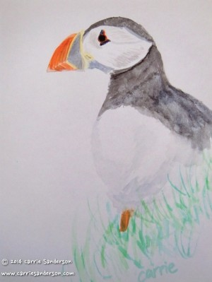 Puffin watercolour