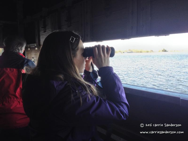 Mini-Adventure: Bird Watching With My Dad